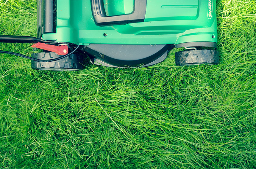 první jarní sekání trávy