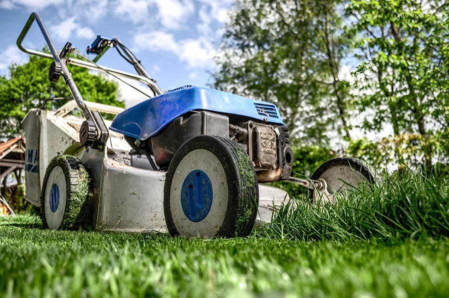 jak správně sekat trávu